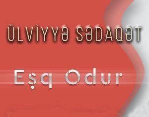 دانلود آهنگ ترکی اولویه صداقت به نام عشق اودور