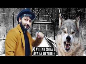 دانلود آهنگ ترکی وقار صدا به نام آواره دیللر