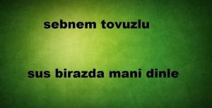 دانلود آهنگ ترکی شبنم توزلو به نام سوس بیرازدا منی دینله