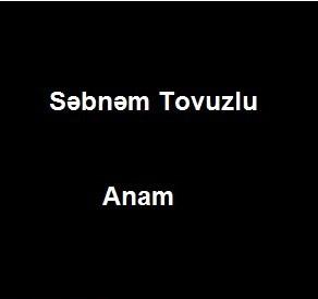 دانلود ترکی آهنگ شبنم توزلو به نام عمرمه قیش گلدی آنام