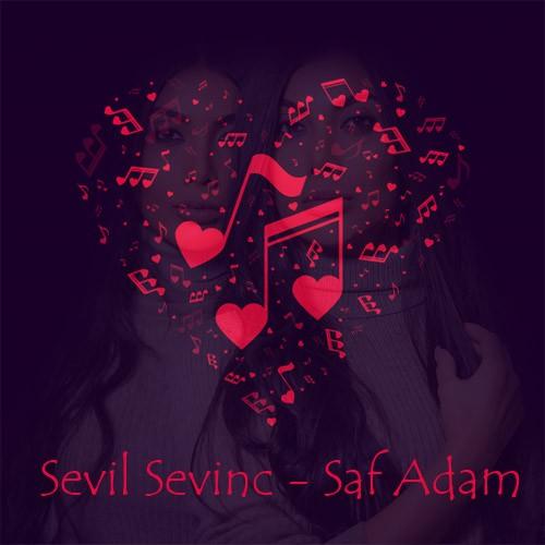 دانلود آهنگ ترکی سویل سوینج به نام صاف آدام